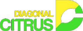DIAGONAL CITRUS S.R.L.