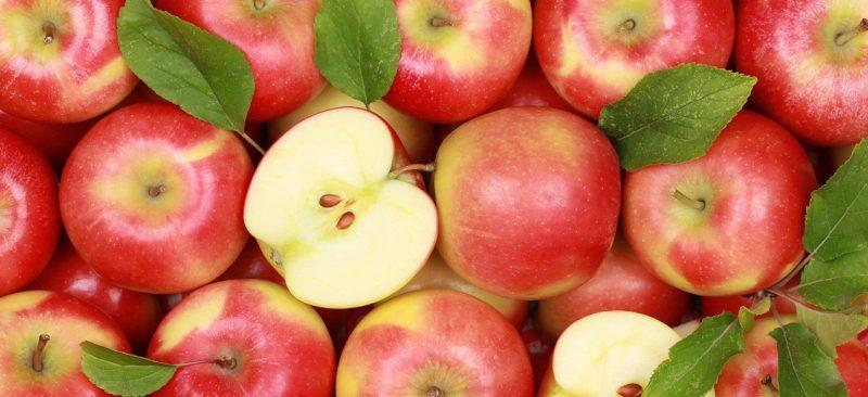 manzanas argentinas