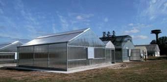 Centro de introducción y saneamiento – EEA Concordia