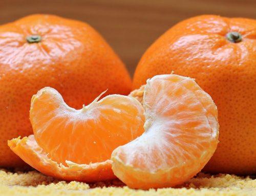 Argentina venderá mandarinas a Colombia