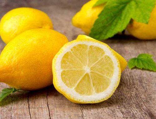 All Lemon de Argentina celebra exitoso cierre de temporada 2018 en EE.UU.