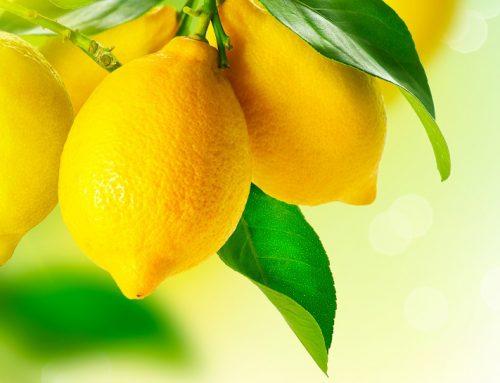 Industria argentina del limón espera exportar a China para 2020