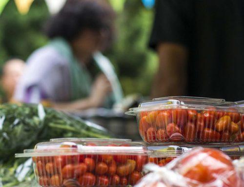 Feria de alimentos orgánicos en el obelisco