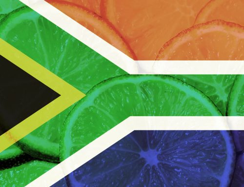 Año de récord para las exportaciones sudafricanas de cítricos