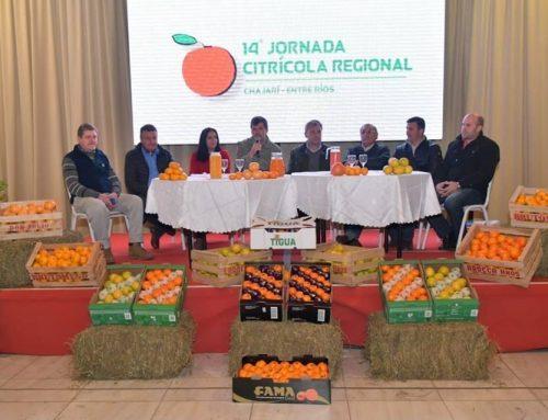 El CiPAF organiza la 15° Jornada Citrícola Regional