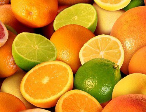 El Puerto de Vigo se reunirá con productores sudafricanos de naranjas