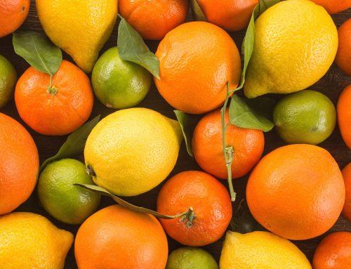 Citrus Conference en Israel