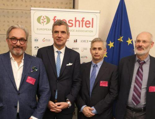 Freshfel Europe pide se focalice las frutas y hortalizas frescas en todas las decisiones políticas para 2019-2024 en las instituciones de la UE presentadas en el Parlamento Europeo
