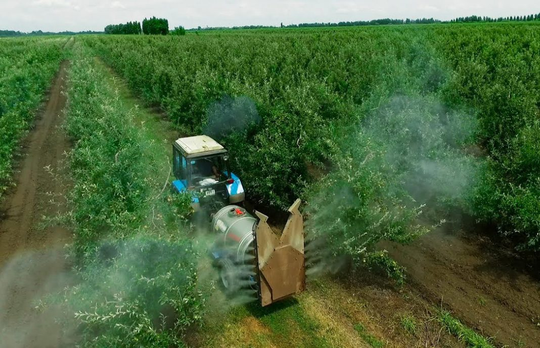 La CE hace oficial la prohibición del uso de la sustancia activa clorpirifos para insecticidas vegetales desde febrero
