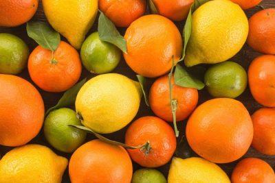 Fruit Logística 2020