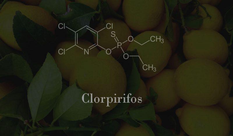 clorpirifos