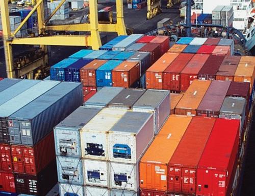 Las exportaciones argentinas de cítricos no pueden competir con Sudáfrica
