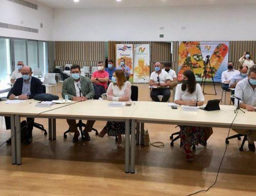 Andalucía producirá más de 2,3 millones de toneladas de cítricos en la campaña 2020-2021