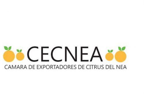 Comunicado CECNEA: Preocupación por la toma de tierras