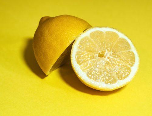 Los limoneros muestran una menor respuesta que los naranjos al patógeno del HLB