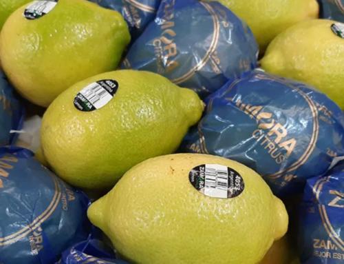 Ya se exportaron los primeros limones de la temporada