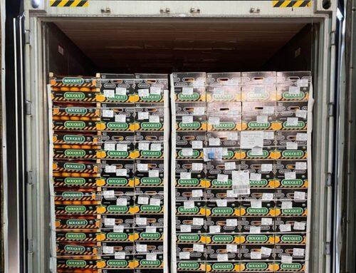 Anecoop abre vía comercial con Perú al enviar el primer contenedor de naranjas desde España