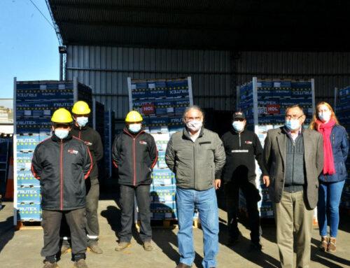 Agricultura y el Senasa certificaron el primer cargamento de limones para exportar a la Unión Europea