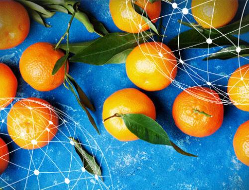 Resumen del mercado global de la mandarina