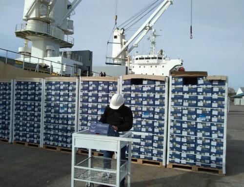 Certificación de fruta fresca y hortalizas que se exportan a Rusia y a la Unión Europea